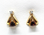 Ladies Diamond and Garnet Earrings