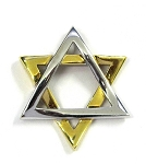 White and Yellow Gold Star Of David Pendant